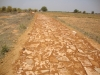 construction-of-new-road-at-jaugarh-hill-where-250-bigha-land-for-koal-community
